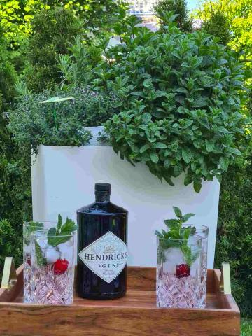 Hendricks Gin - 700ml - 44% Vol.